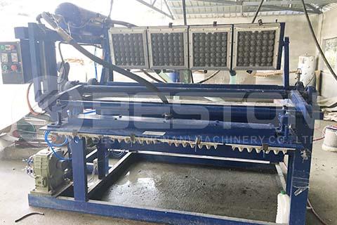 Máquina para bandejas de huevos BTF-1-4 en Filipinas
