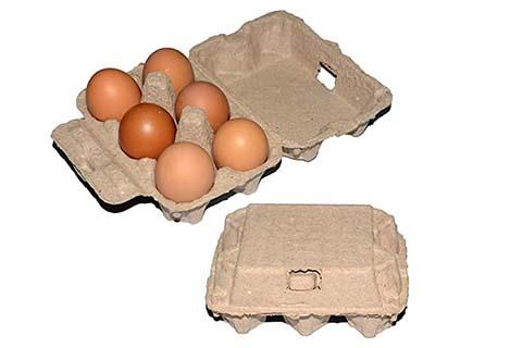 6 Egg Cartons