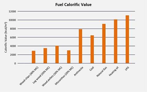 Valor calorífico del combustible
