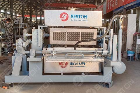 BTF3-4 Egg Tray Machine for Sale