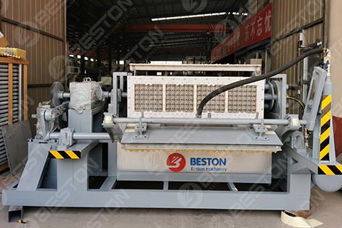 BTF4-4 Egg Tray Machine for Sale