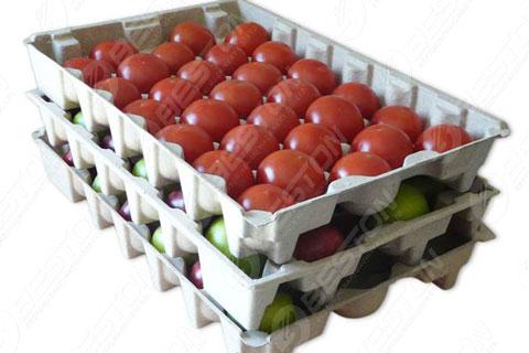Beston egg tray machine